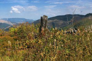 Z Čertovice východnou časťou hrebeňa Nízkych Tatier